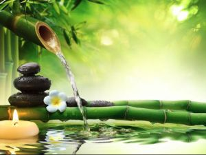 A Água e o Feng Shui...